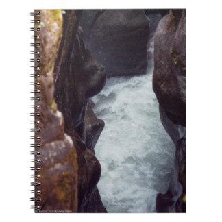 The Sculptor Notebook