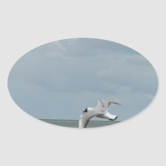 The sea gull and the sea oval sticker