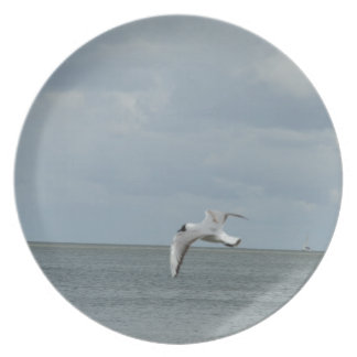 The sea gull and the sea party plates