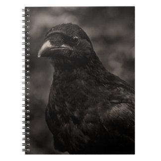 The Seeker Notebook