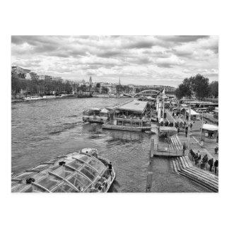 The Seine V2 Postcard