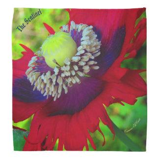 The Sentinel(rev) poppy  kerchief
