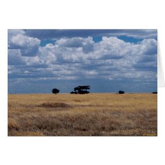 The Serengeti Plain Card