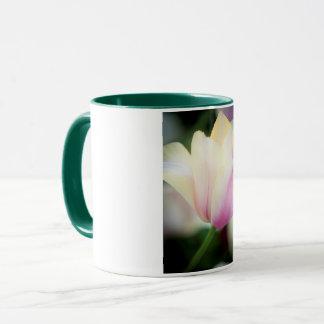 The shades on a tulip mug
