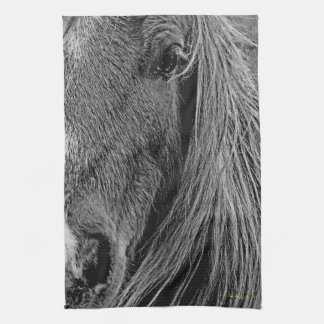 The Shadows in My Grey Kitchen Towel Western Horse