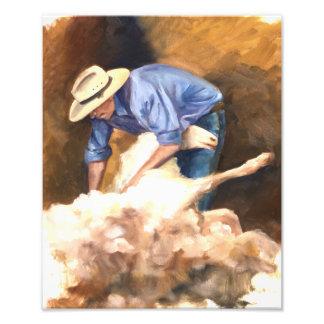 The Shearer of Sheep Photo Print