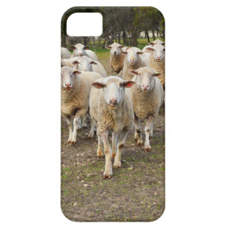 The Sheep Come Marching In Hurrah, iPhone 5 Case