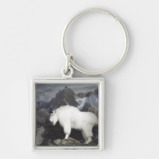 The Sheep & the Goats Silver-Colored Square Keychain