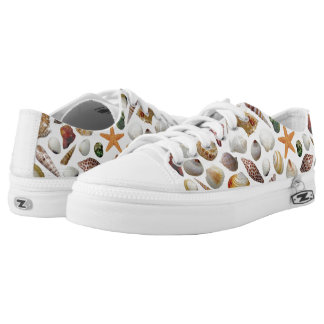 The Shell Collector Low-top Sneakers