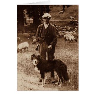 """The Shepherd""~Border Collie Notecard"
