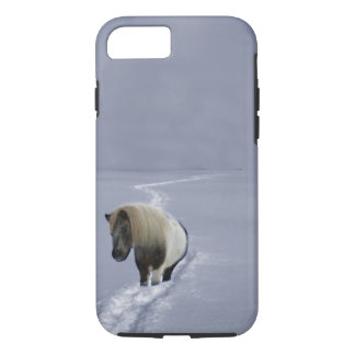 The Shetland Ponys Trail Phone Case