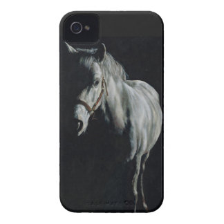 The Silver Horse in the shadows Case-Mate iPhone 4 Cases