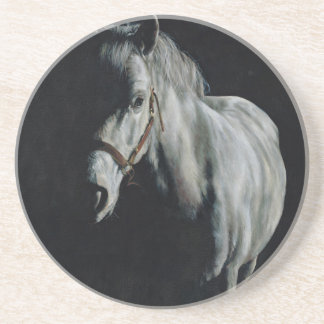 The Silver Horse in the shadows Coaster