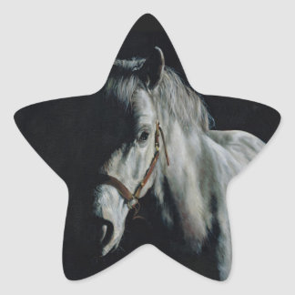 The Silver Horse in the shadows Star Sticker