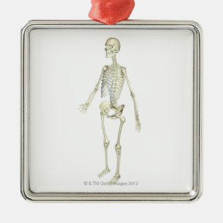 The Skeletal System Metal Ornament