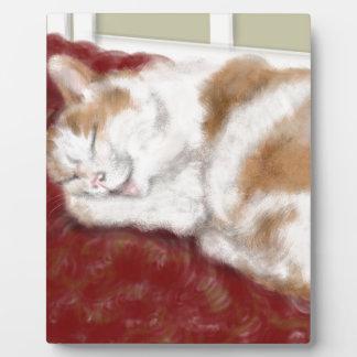 The sleeping cat plaque