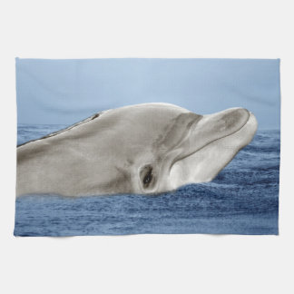 The smiling dolphin kitchen towel