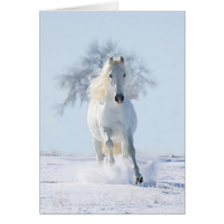 The Snow Stallion and the Tree Horse Greeting Card