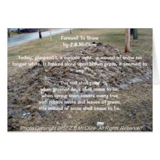 the snowbird's poem card