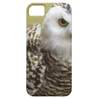 The Snowy Owl Case For The iPhone 5