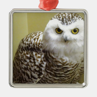 The Snowy Owl Metal Ornament