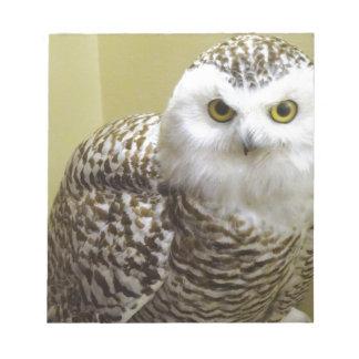 The Snowy Owl Notepad