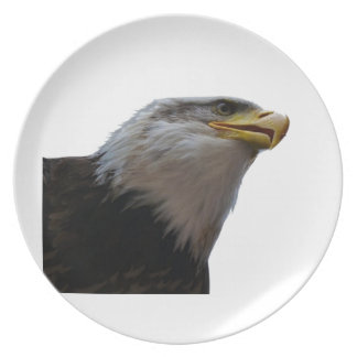 THE SOARING FREEDOM PLATE