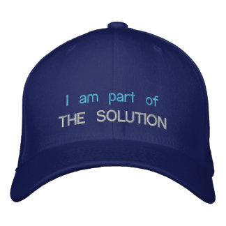 The Solution hat Embroidered Hat
