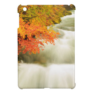 The Soteska Vintgar gorge in Autumn iPad Mini Cover