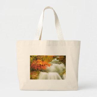 The Soteska Vintgar gorge in Autumn Large Tote Bag