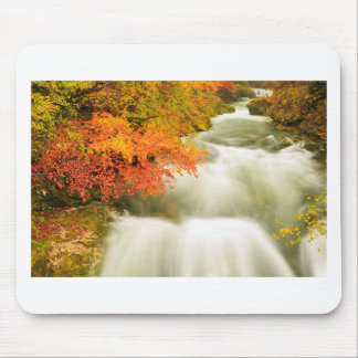 The Soteska Vintgar gorge in Autumn Mouse Pad