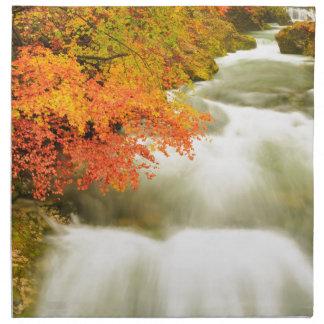 The Soteska Vintgar gorge in Autumn Napkin