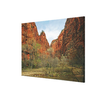 The Spearhead Canvas Print