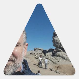 The Sphinx, Bucegi Mountains, Romania (design #2) Triangle Sticker