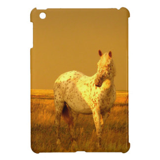 The Spotted Horse In The Golden Glow of A Prairie Cover For The iPad Mini