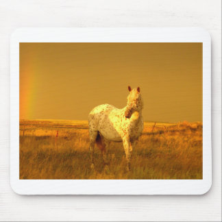 The Spotted Horse In The Golden Glow of A Prairie Mouse Pad