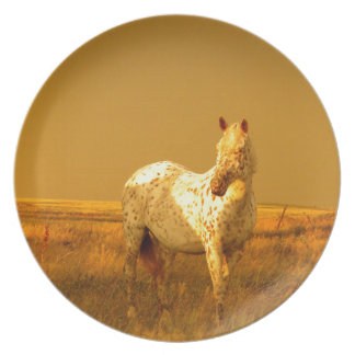 The Spotted Horse In The Golden Glow of A Prairie Party Plate
