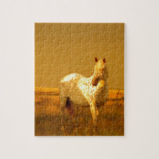 The Spotted Horse In The Golden Glow of A Prairie Puzzle