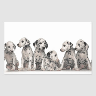 THE SPOTTED LINE -CUTE DALMATIANS STICKERS