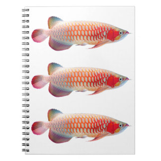 "The spring note ""of Super Red Arowana"" Spiral Notebook"