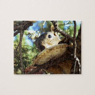 The Squirrel's Sandwich - Puzzle