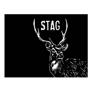 The Stag, Bachelor Party postcard invite