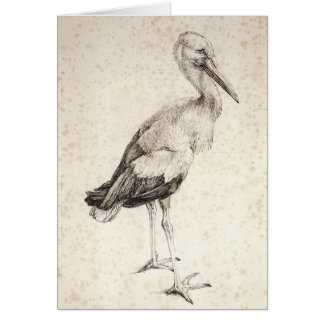 The Stork Card
