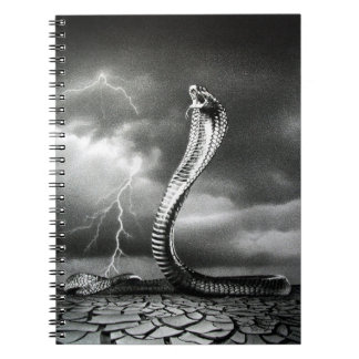 THE STORM IS COMING NOTEBOOK