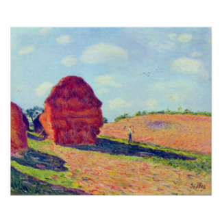 The straw rents by Alfred Sisley Poster