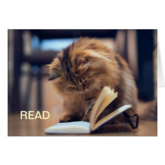 The Studious Cat Note Card