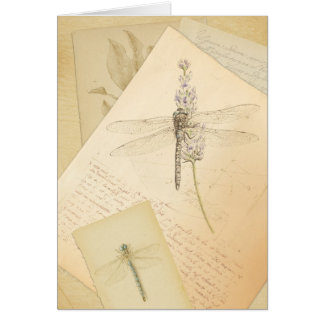 The Study of Dragonflies greeting card