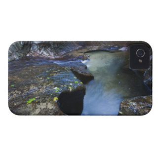 The Subway slot canyon iPhone 4 Case-Mate Cases