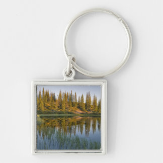 The sunrise illuminates trees on an unnamed Silver-Colored square keychain
