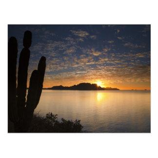 The sunrise over Isla Danzante in the Gulf of Postcard